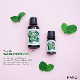 gioi thieu ve tinh dau bac ha peppermint essential oil