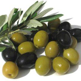 dau oliu nguyen chat olive