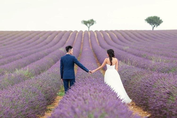 y nghi cua hoa lavender trong tinh yeu