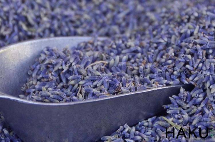 lavender kho