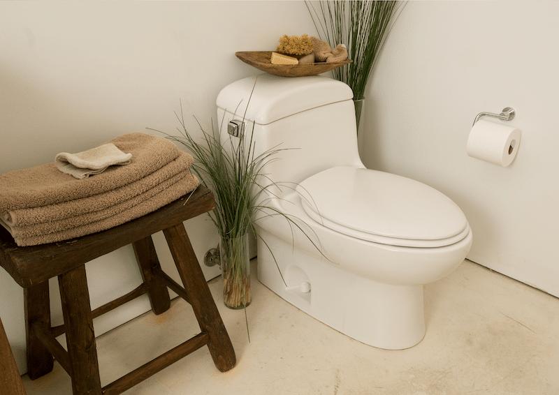 cach dung tinh dau khu mui toilet