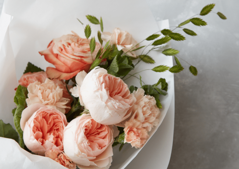 cach chon hoa cho nguoi lon tuoi